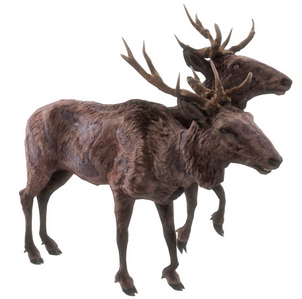Radstag.png